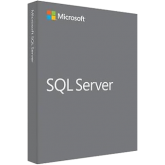Microsoft SQL Server Enterprise Core Single-Russian License/Software Assurance Pack OPEN 2 License No Level Core License Qualified